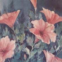 Pink Splendor